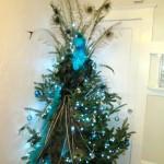 Gill_tree 4 (2)