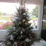 Gill_tree_6