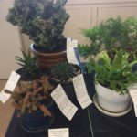Horticulture__1