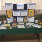 Karen Noonan~Saving Our Pollinators