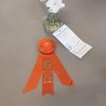 Award of Merit~Monica Lucy