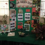 Co-president Pat Sandler displayed our refurbished garden at the Punta Gorda Woman's Club.